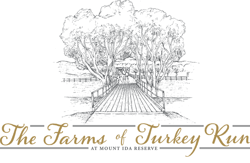The Farms of Turkey Run